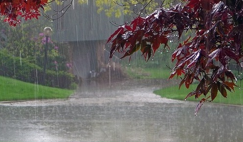 Rain_Beautiful